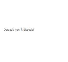 Hliníková LED baterka - Firestone